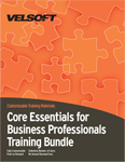 Core Essentials for Business Professionals