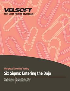Six Sigma: Entering the Dojo